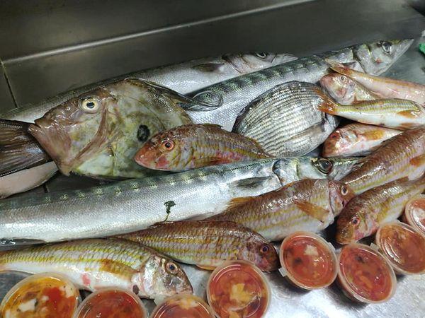 Fresh and Seafood